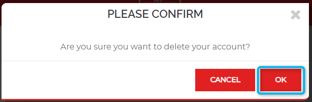 Confirm That You Want To Delete